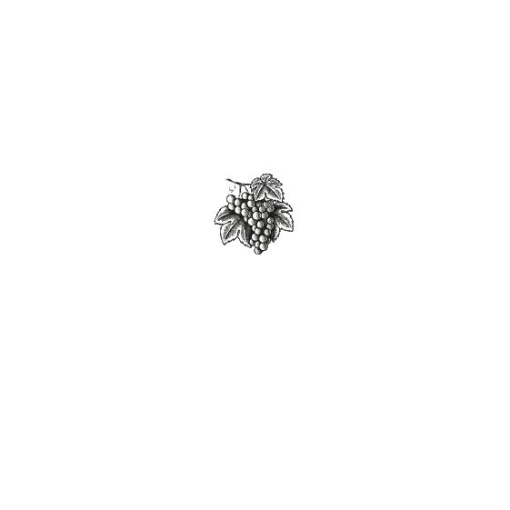 logo-trademade-01.png